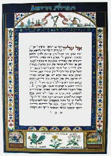 Jewish Art - Physician's Prayer Latin Flowers